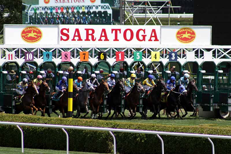 Horses exiting the starting gate at the Saratoga Race Course