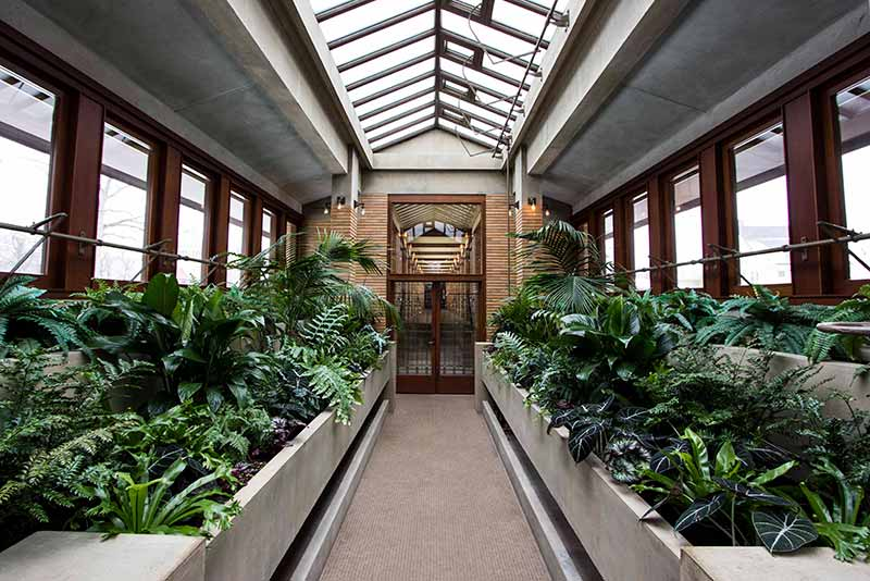 An atrium at the Dwight D. Martin House Complex in Buffalo NY